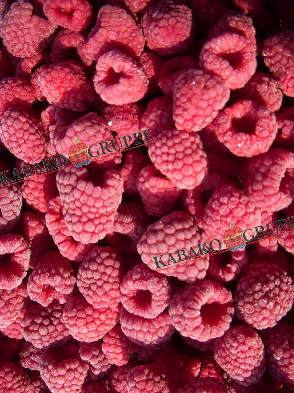 Frozen (IQF) Raspberries 75