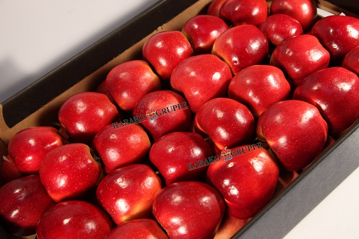 Frozen (IQF) Apples 86