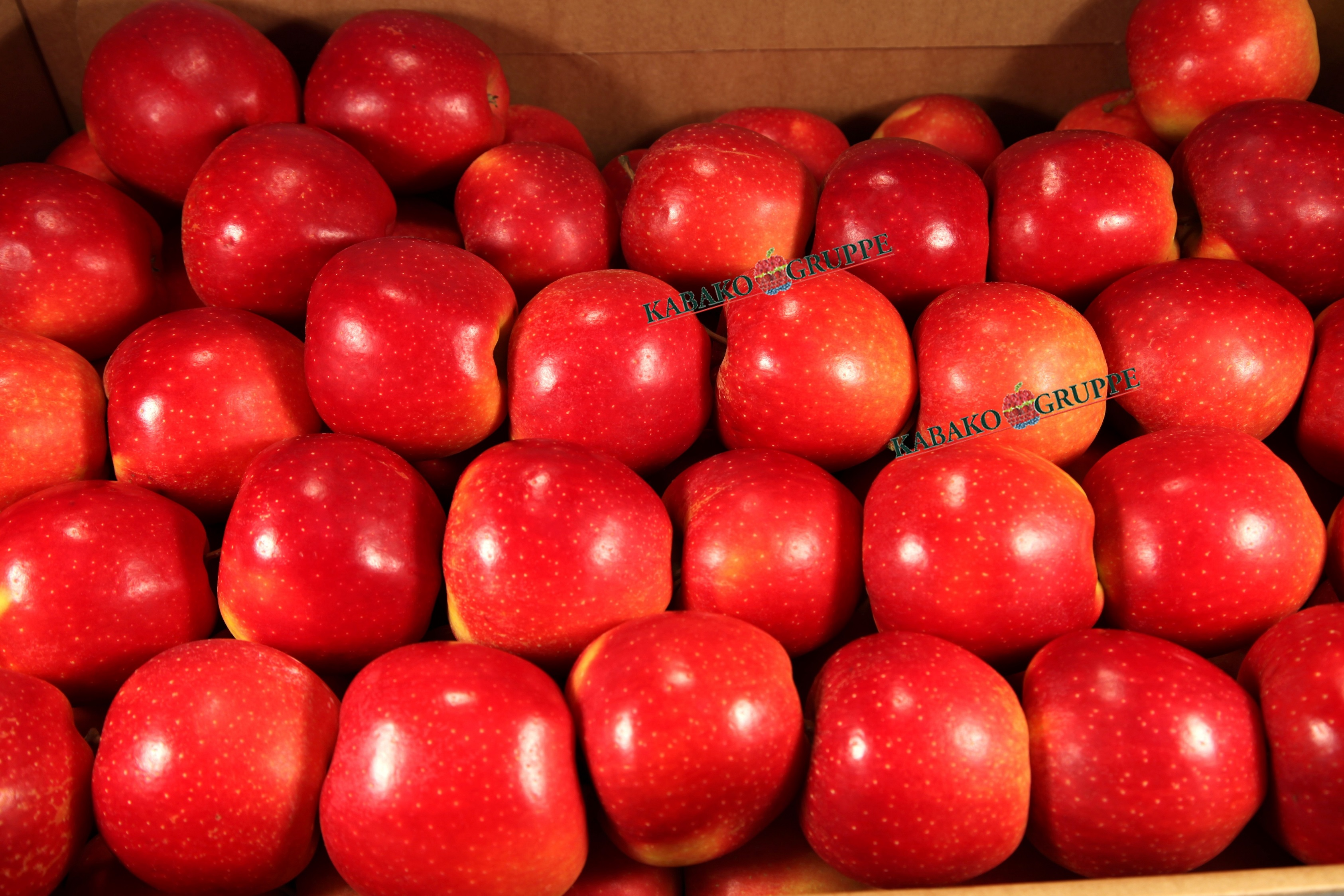 Frozen (IQF) Apples 79