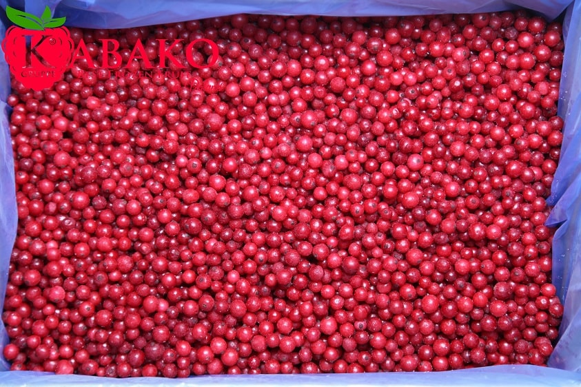 Frozen (IQF) Red Currants 16