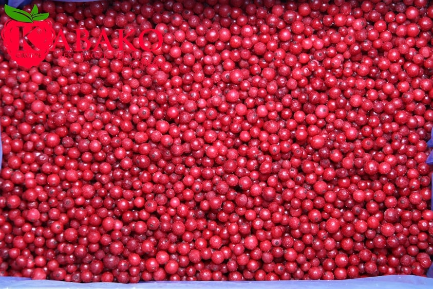 Frozen (IQF) Red Currants 14