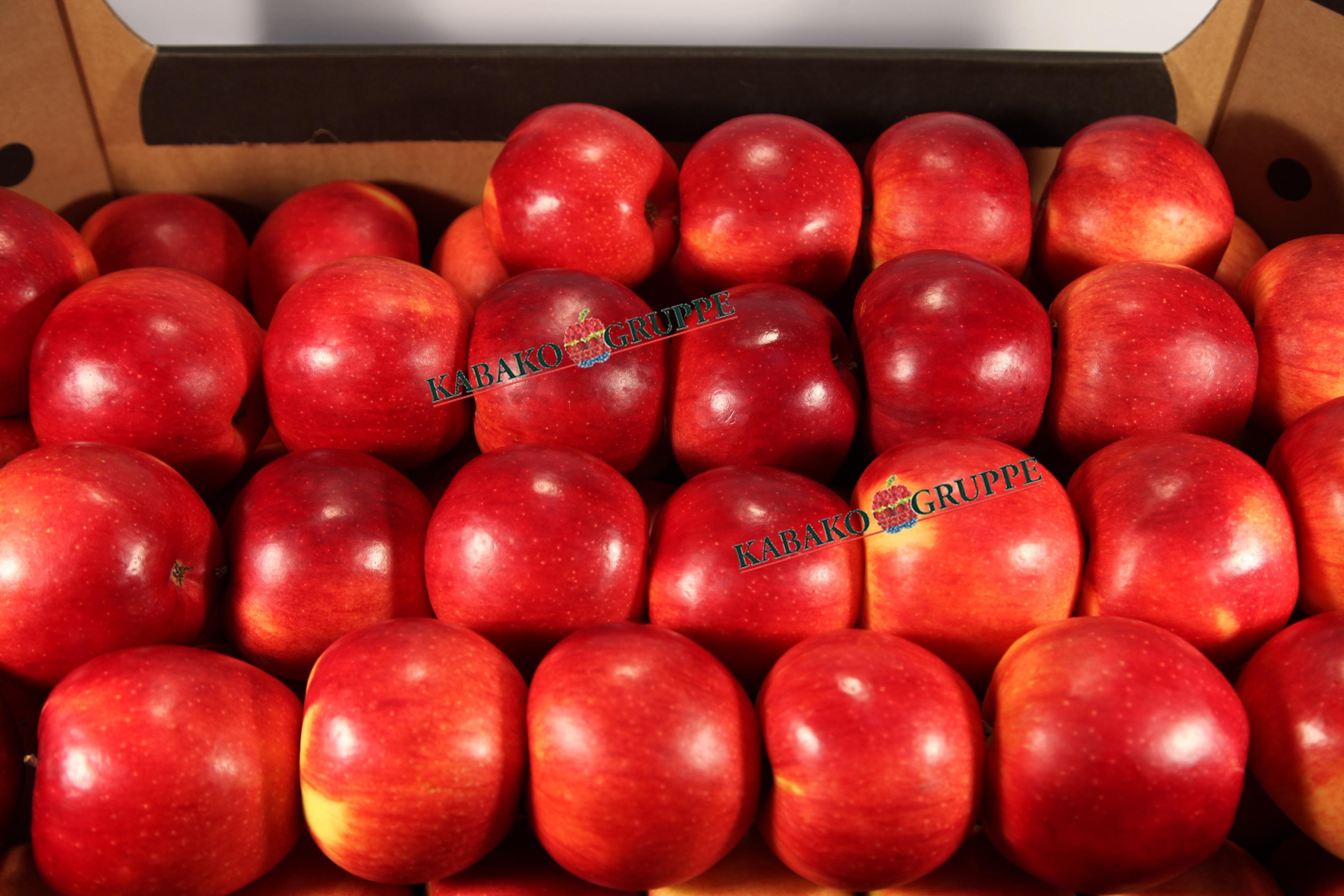 Frozen (IQF) Apples 51