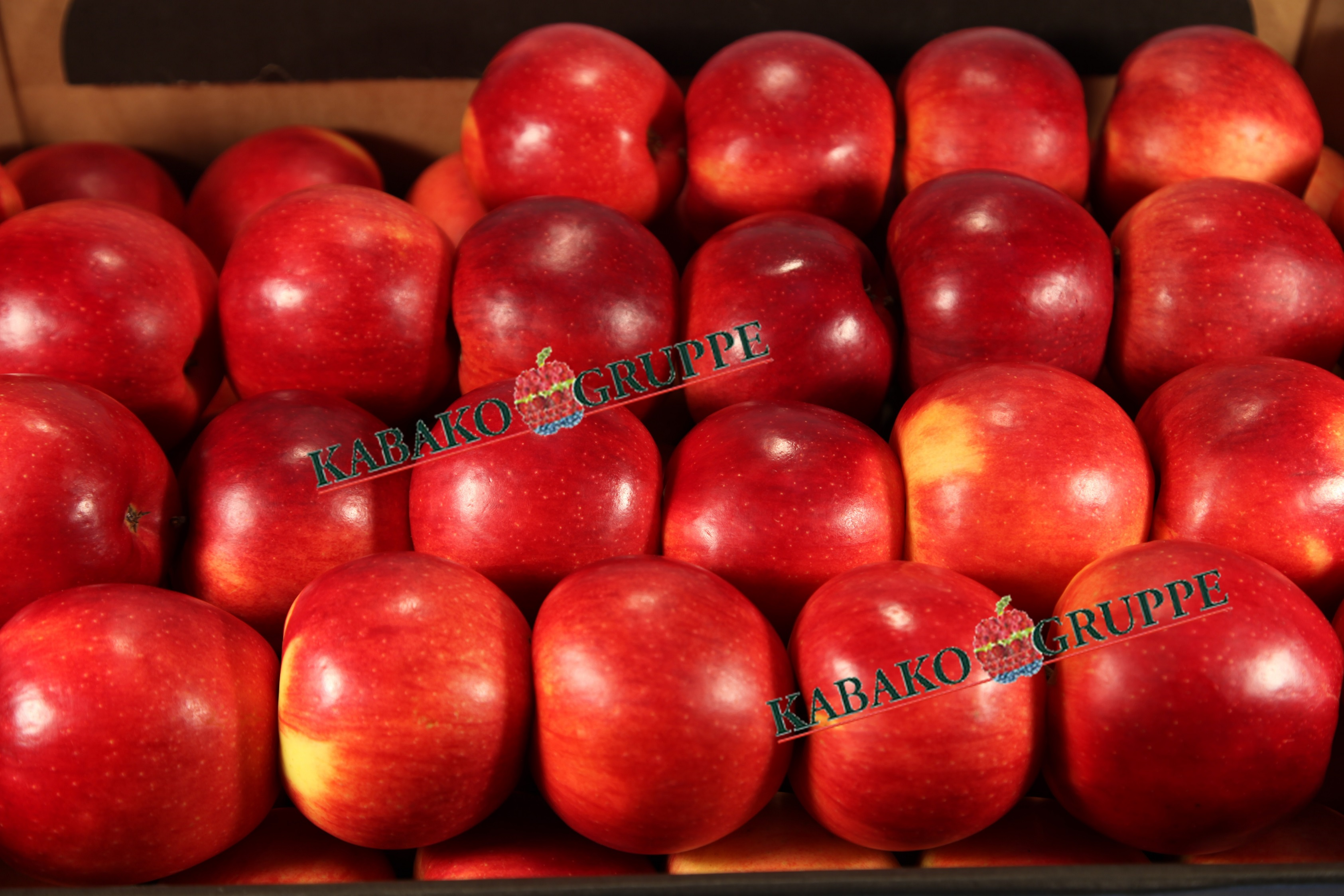 Frozen (IQF) Apples 51