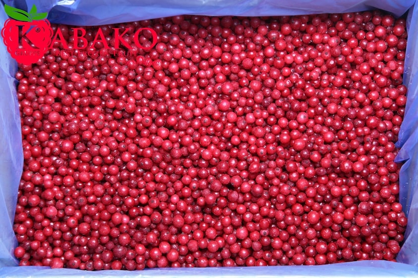 Frozen (IQF) Red Currants 17
