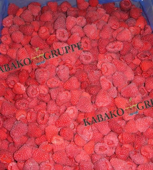 Frozen (IQF) Raspberries 73