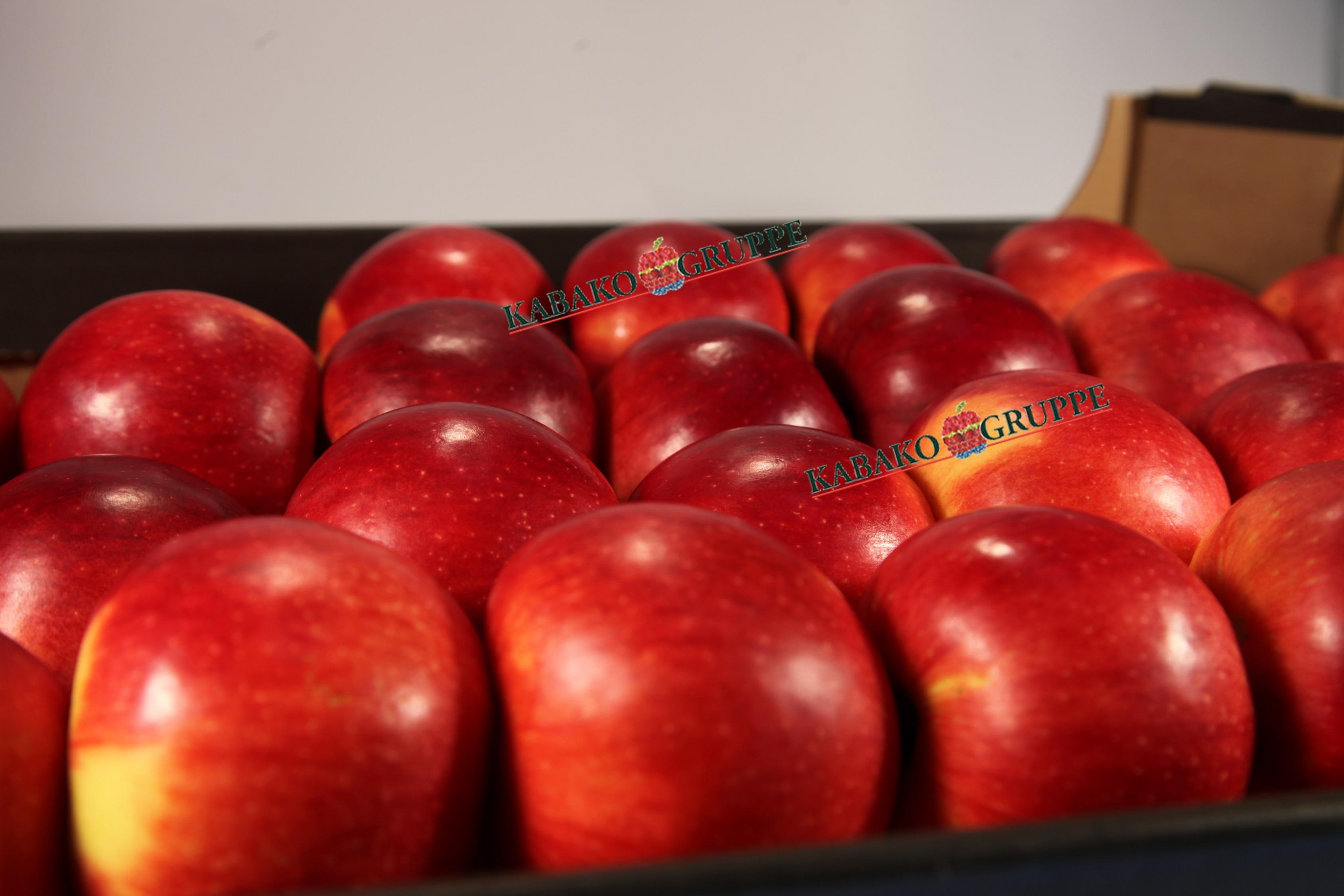 Frozen (IQF) Apples 48