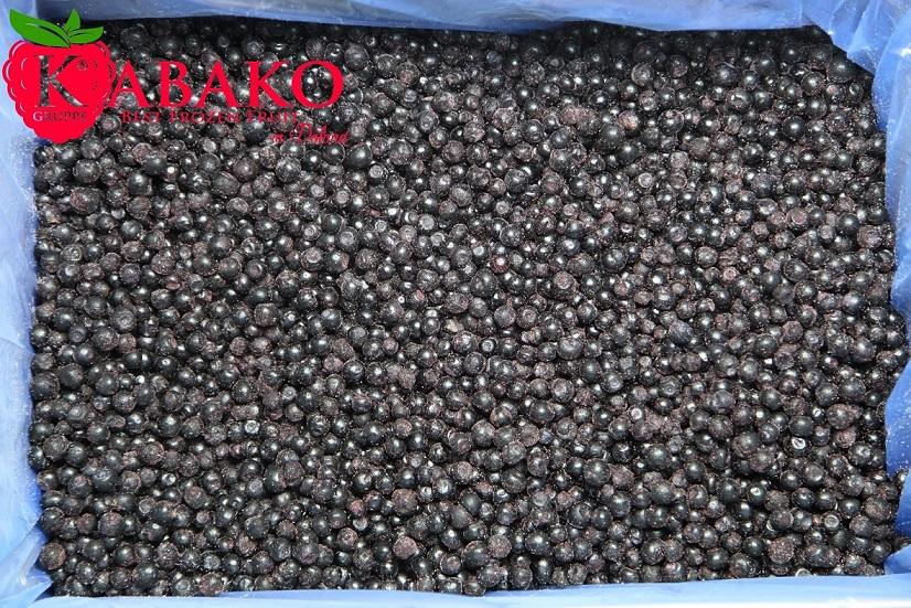 Frozen (IQF) Wild Blueberries 5