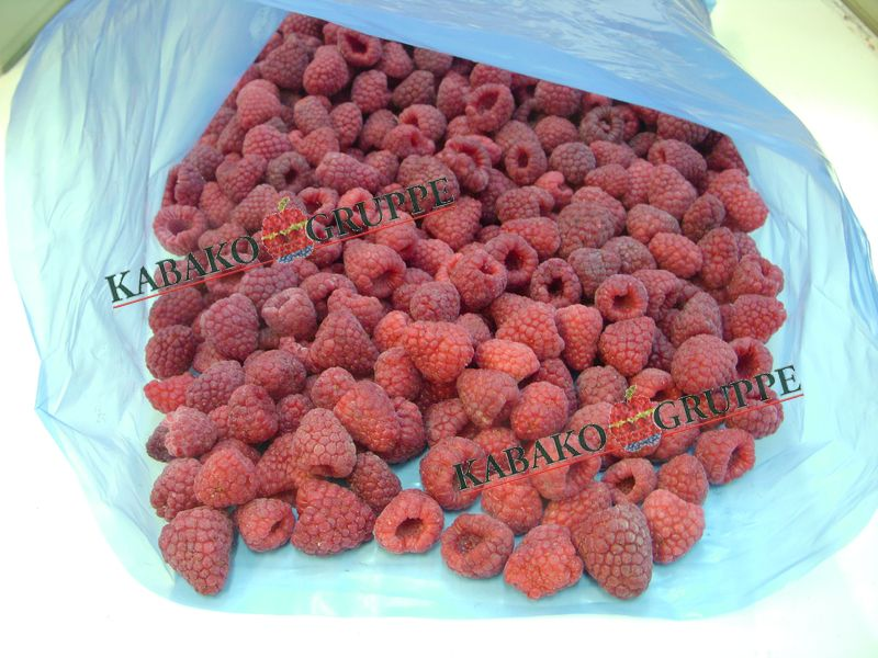 Frozen (IQF) Raspberries 70