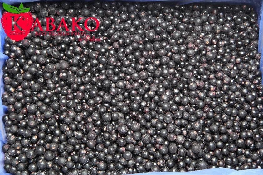 Frozen (IQF) Black Currants 4