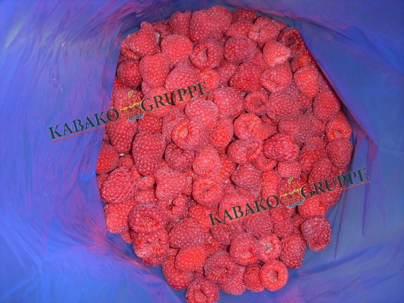 Frozen (IQF) Raspberries 22