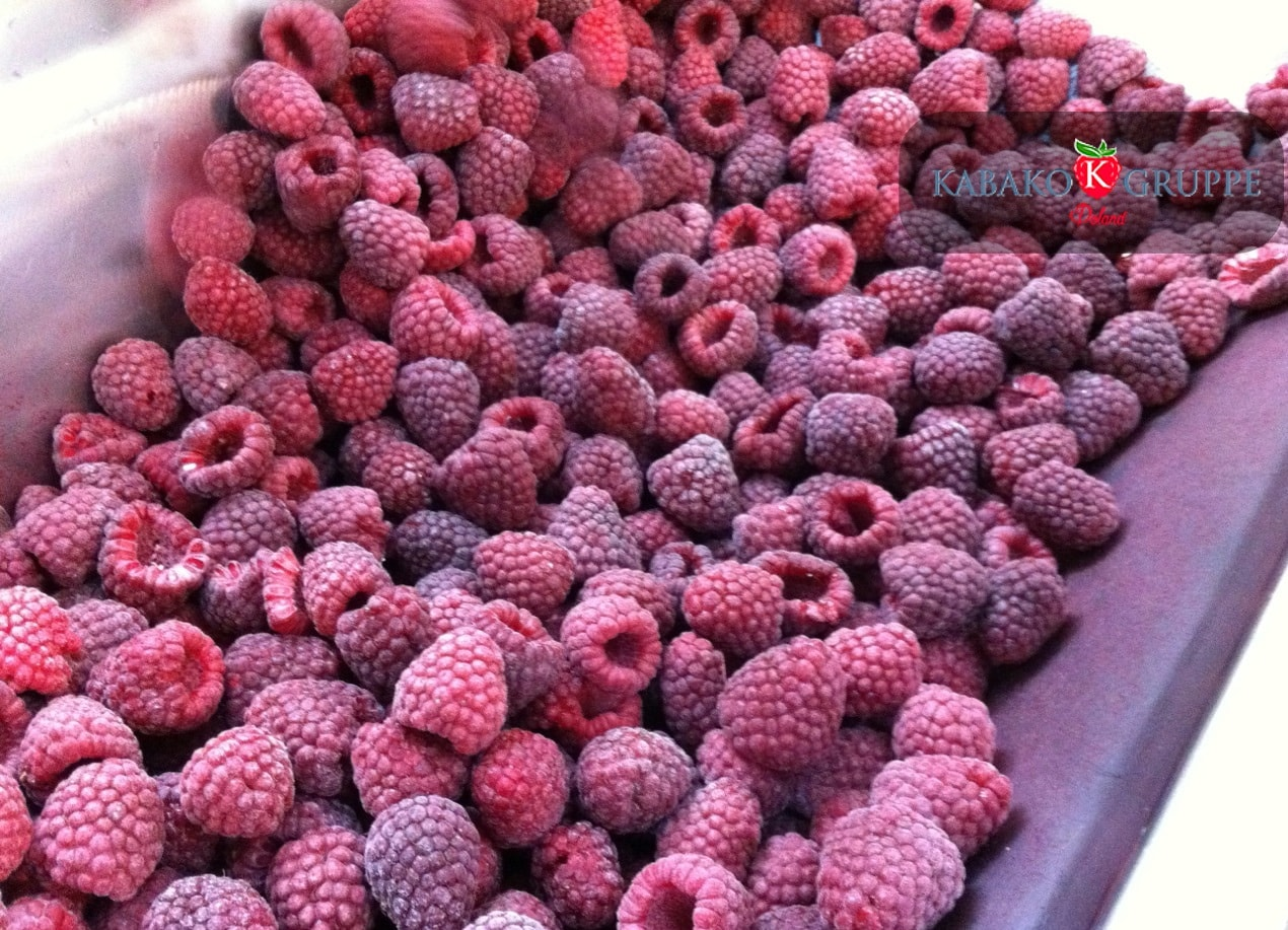 Frozen (IQF) Raspberries 3