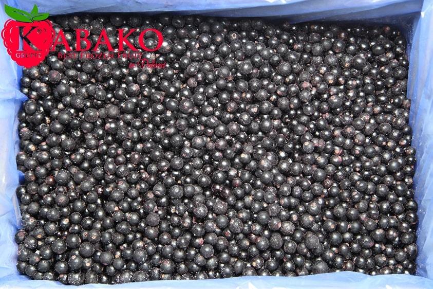 Frozen (IQF) Black Currants 5