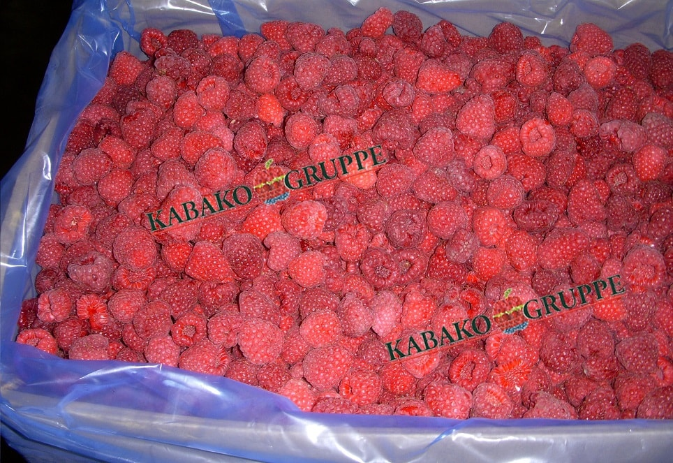 Frozen (IQF) Raspberries 57