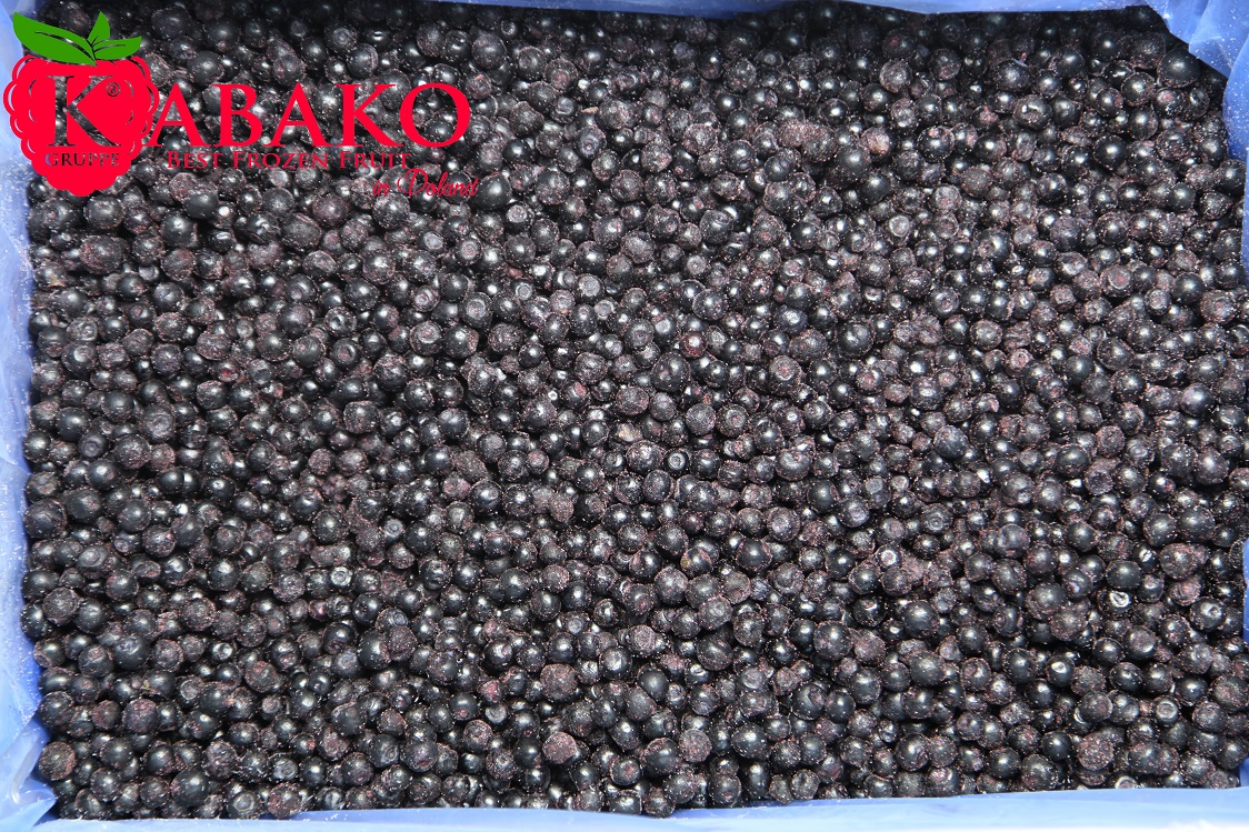 Frozen (IQF) Wild Blueberries 1