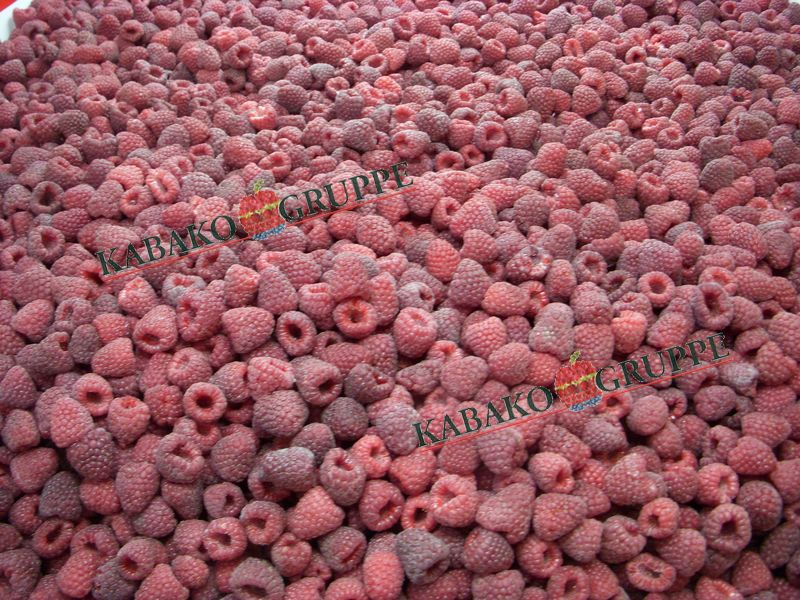 Frozen (IQF) Raspberries 54