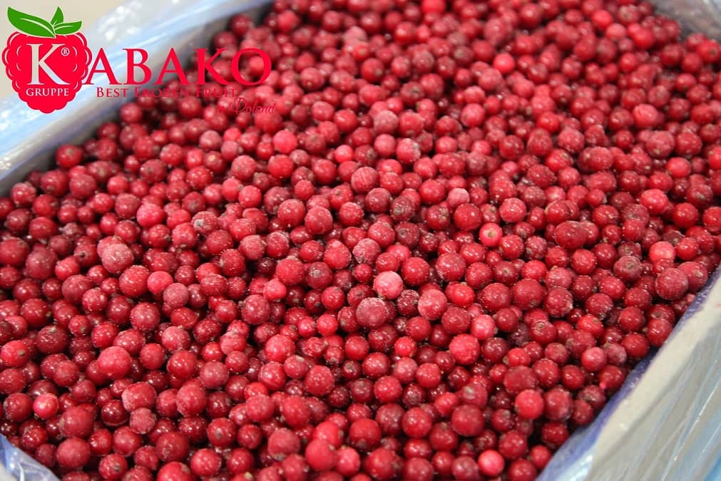 Frozen (IQF) Red Currants 20