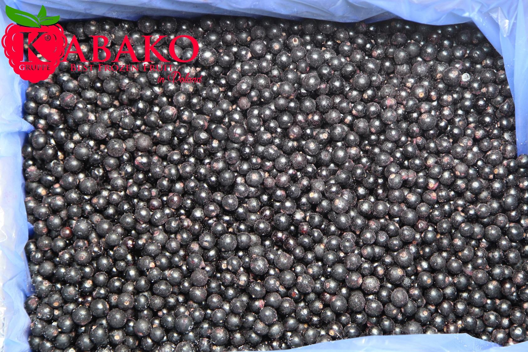 Frozen (IQF) Black Currants 2