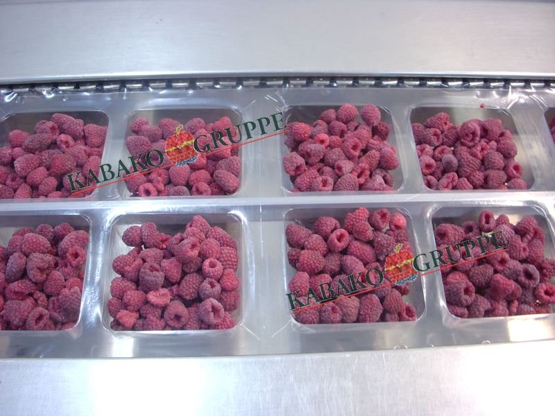Frozen (IQF) Raspberries 68