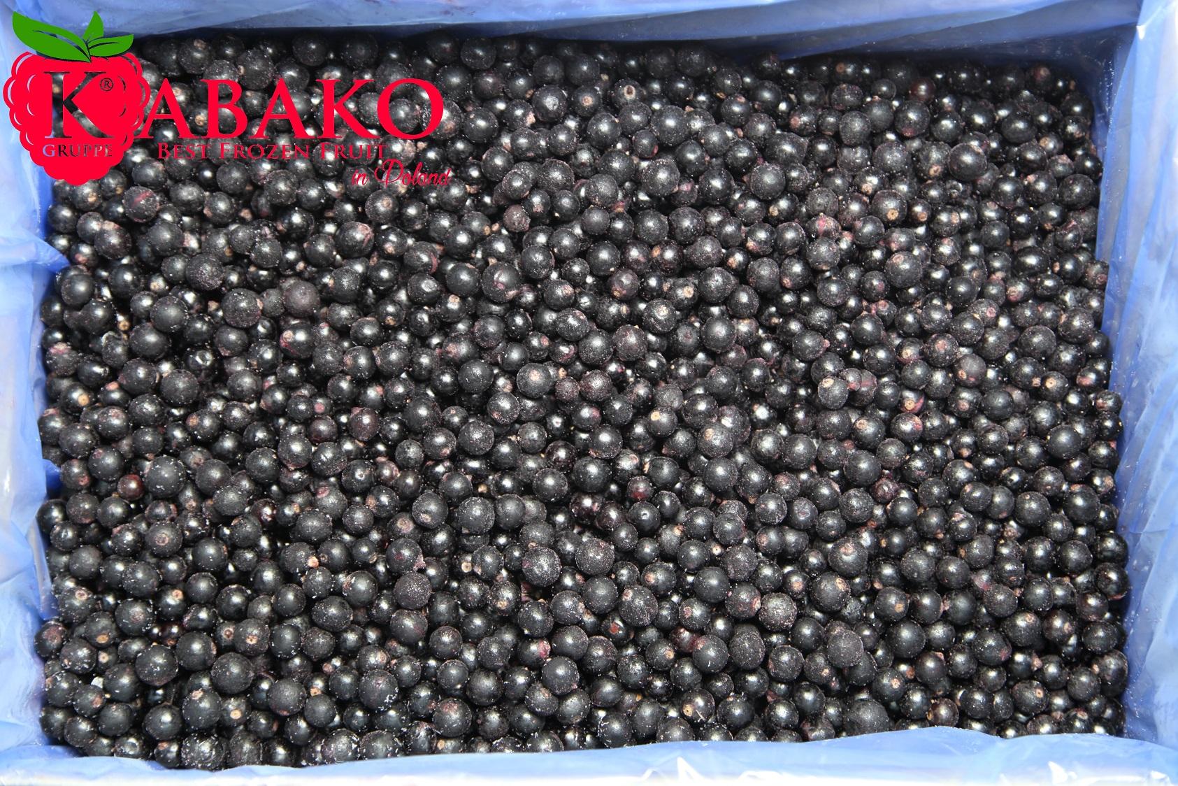 Frozen (IQF) Black Currants 6
