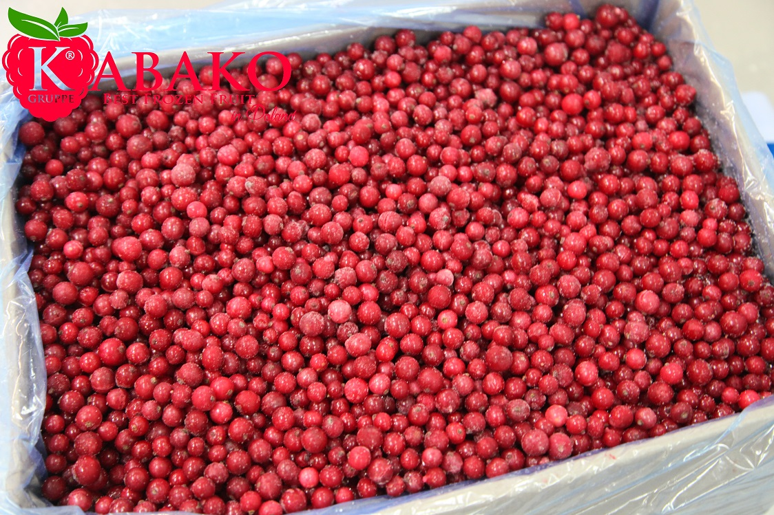 Frozen (IQF) Red Currants 18