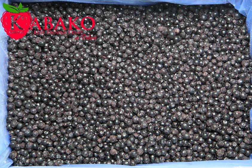 Frozen (IQF) Wild Blueberries 4