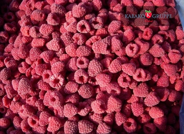 Frozen (IQF) Raspberries 26