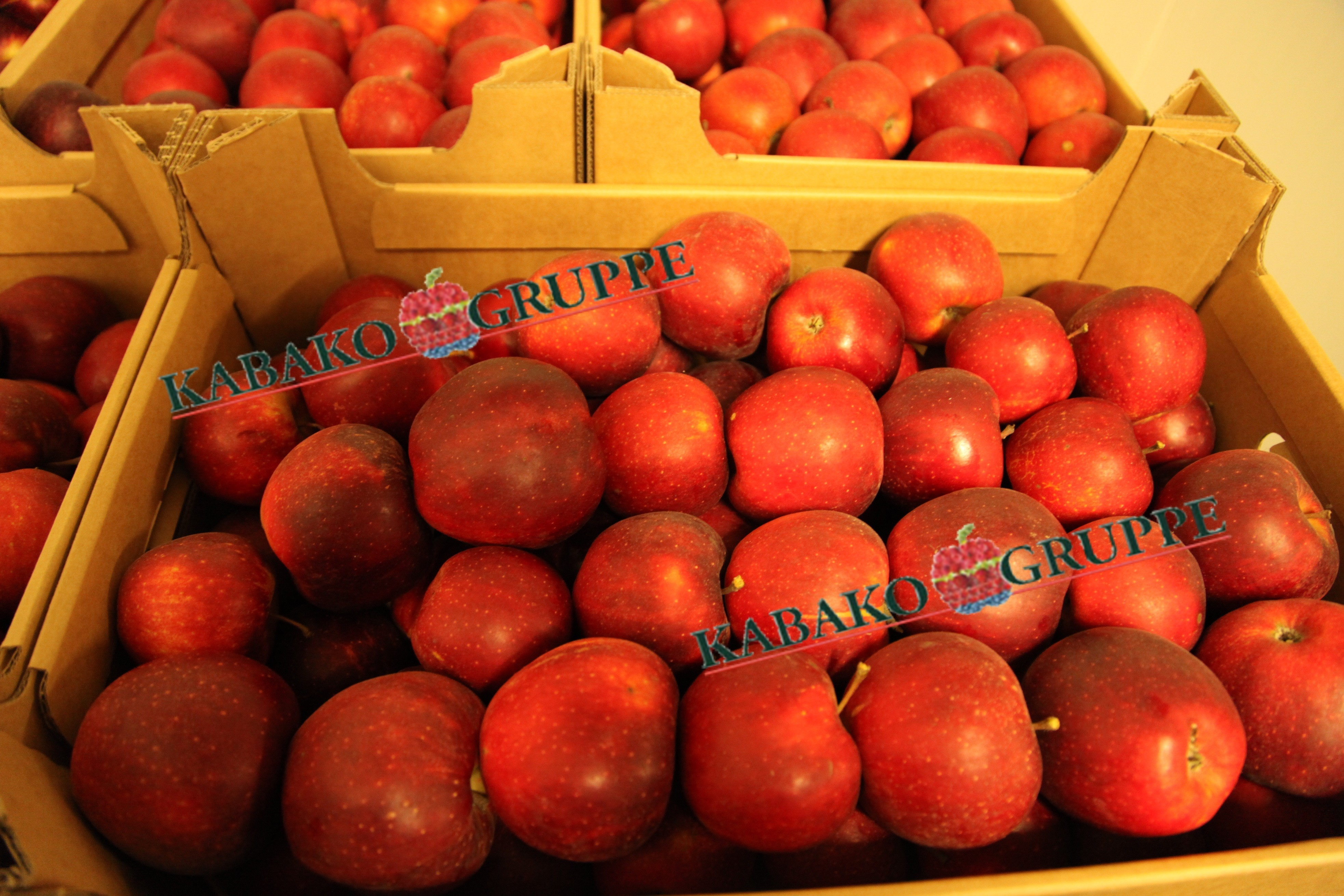 Frozen (IQF) Apples 83
